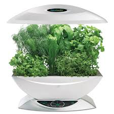 hydroponic herb garden. Hydroponics And Aeroponics In Your Kitchen: The Future Is Now! Hydroponic Herb Garden M