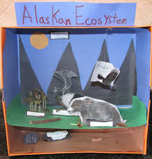 Science Diorama   ecosystem   Life Science   Pinterest   Dioramas     Pinterest Saved from