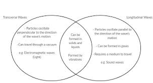 transverse and longitudinal waves venn diagram venn diagrams are used for comparing and contrasting topics