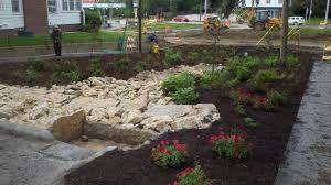 Small Picture Omaha By Design58th street rain garden Omaha By Design