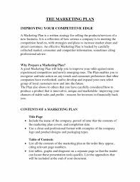 Business Plan Marketingon Company Pdf Examples Of An For Outline