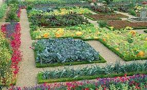 start planning your garden modern