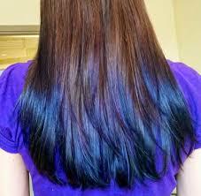 Blue Dip Dye On Light Brown Hair Dark Brown Hair Dip Dyed Purple Hair Color Highlighting