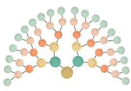 Modern Fan Chart Family Tree Id2