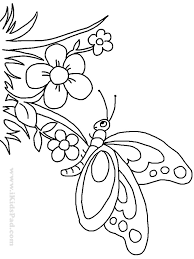 flower and butterfly coloring pages. Interesting And Flower Butterfly Coloring Pages 9 Flowers And Butterflies In C