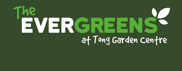 Tong Garden Centreu0027s New Owners Promise Big InvestmentTong Garden Centre Christmas Trees
