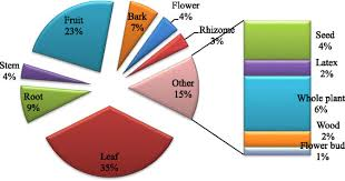 Pi Chart Representing Relative Uses Of Various Plant Parts