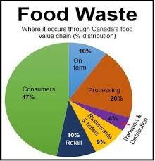 Food Waste Chart Food Waste Canada Food Waste Food Value Food