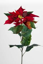 Weihnachtsstern Natura 72cm Samt Rot Pm Kunstblumen Künstliche Blumen Poinsettie