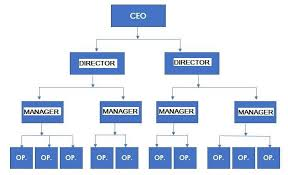 Image Result For Organizational Structure Examples Small