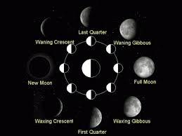 Lunar Chart 2015 Hair Cut According To The Lunar Calendar 2015 What Should