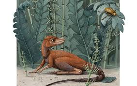 'Tiny Bug Slayer' <b>Dinosaur</b> Relative Would Fit in the Palm of a <b>Hand</b> ...