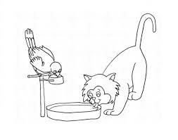 Online Coloring Pages Drinking Coloring Page The Parrot And The Cat