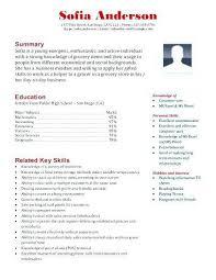 Store Clerk Resume Sample Nfcnbarroom Com