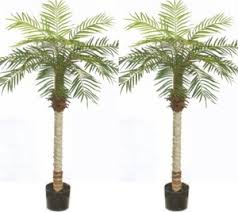 2 Artificial 5\u0027 Phoenix Palm Tree Plant Bush Pool Patio Deck Potted Trees | Synthetic