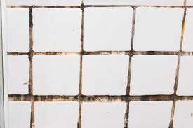 Top 10 Reasons To Use FRP Instead Of Tile In A Commercial Kitchen