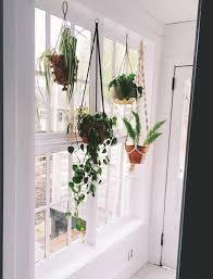 hanging window planter planter wart modern planters