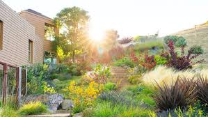 Small Picture Waterwise Garden Design HOME DESIGN INSPIRATION