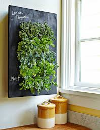 planter from williams sonoma lets you grow edible art that looks good and tastes good if you have a blank wall near a window tuck your favorite herbs