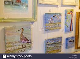 florida sanibel captiva island art gallery paintings sea birds