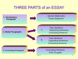 components of an essay introduction parts of an essay writing tips testden