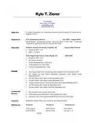 Cyber Security Career Objective It Project Manager Resume Entry