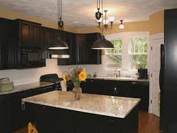 how to clean painted kitchen cabinet doors image collections doors