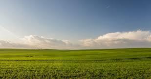 tall grass field sunset. Green Grass Field. Perfect Free Stock Photo Of Landscape Nature Sky Field Throughout Tall Sunset