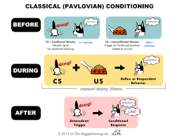 phobias pavlovian model classical conditioning examples alisen berde classical conditioning examples alisen berde