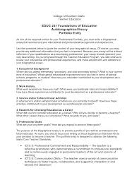 Sample Informative Essay Examples Education Essay Example How To