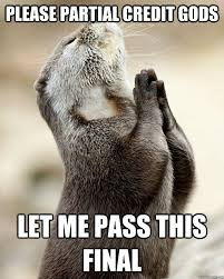Please Partial Credit Gods Let me pass this final - Otter praying ... via Relatably.com