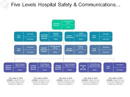 Five Levels Hospital Safety And Communications Org Chart