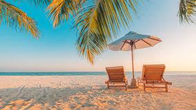 beautiful beach scenes. Modren Scenes Beach Background Beautiful Beach Landscape Tropical Nature Scene Palm  Trees And Blue Sky Throughout Scenes L