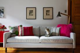 home 2 pictures crate barrel. the family cat tigger perches with pride on a new sofa from high fashion home 2 pictures crate barrel