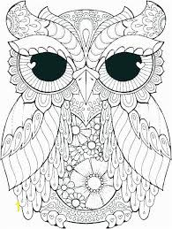Owl Coloring Pages To Print For Adults Coloring Pages Free Owl