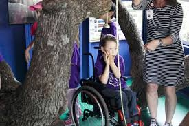 Disabled Texas boy's Make-A-Wish ask for wheelchair-accessible tree house  granted