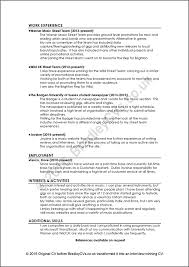 example of good cv layout cvs resumes templates cvsintellect com the résumé specialists