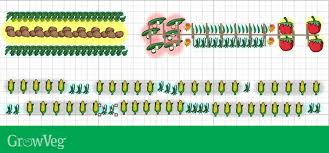 Companion Planting Chart Uk Companion Planting With Beans