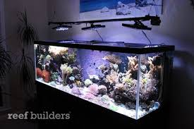 reef aquarium led light