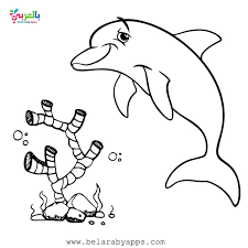 Educational game for kids educational game. Free Printable Sea Animals Toddler Coloring Page Belarabyapps
