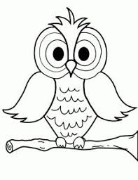 Small Picture 36 best Owl Coloring Pages images on Pinterest Coloring books