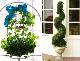 Image result for Photography: topiaries images Courtesy World Wide Web