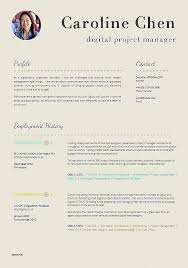 Professional Resume Example Good Professional Resumes Template Fresh
