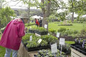 rare plant garden antiques benefits women s support services in sharon
