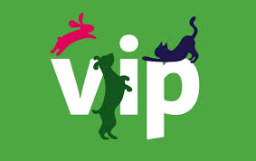 <b>Puppy</b> Products | Treats, Toys, Collars & Care | Pets at Home