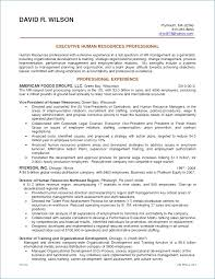 Retail Business Plan Template Amazing Business Plan Template For Service Company Fresh Fill In Business