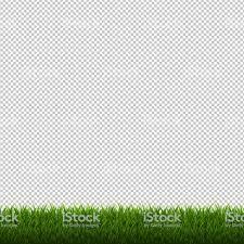 grass transparent background. Grass Border Isolated Transparent Background Royalty-free Grass Border  Isolated Transparent Background Stock Vector Art C