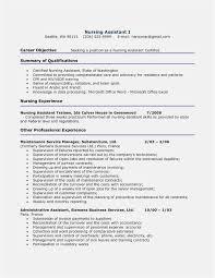 Download Ms Word Resume Templates Free Sample 79 Beautiful