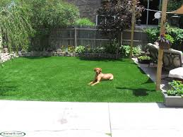 artificial turf. Contemporary Turf Synthetic Turf Illinois Pet 9 Intended Artificial T
