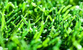 artificial football turf. Artificial Turf Football